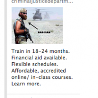 I think I've found my new career path... Thanks, FaceBook ad!