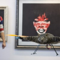 Catcopter: Yes, Some Guy Turned His Dead Cat Into A Helicopter